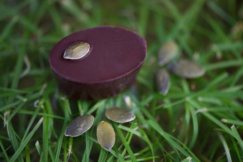 chocolat sacrée courge