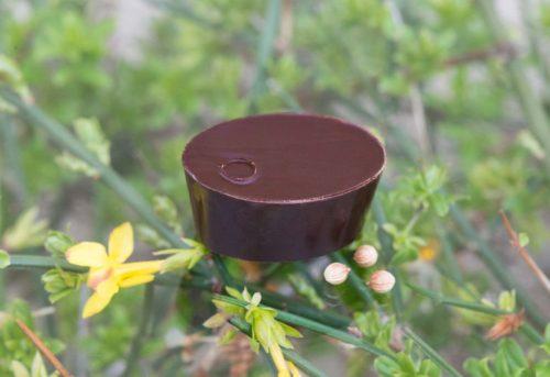 chocolat graines de coriandre