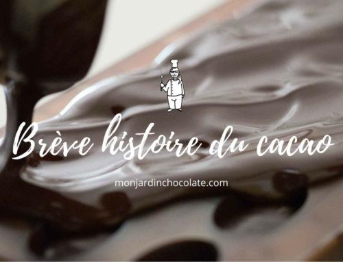 Brève histoire du cacao