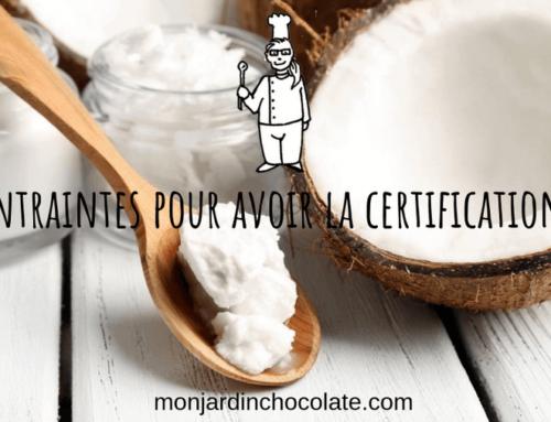 Chocolat certifié bio : les contraintes de la certification