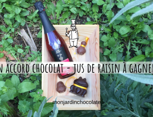 Un accord chocolat – jus de raisin surprenant à gagner !