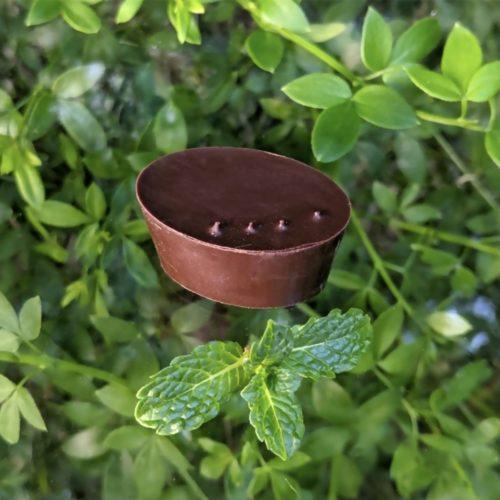 ganache menthe fraîche - mon jardin chocolaté, chocolaterie bio artisanale paris